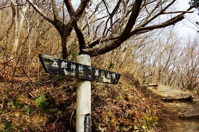 幕山_24