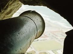 Cannon portal.jpg