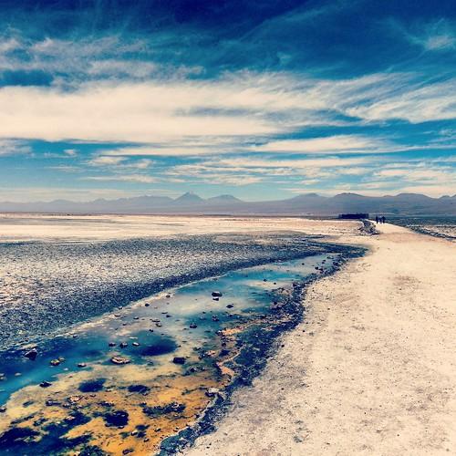 Recuerdos del Salar de Atacama / Memories from Salar de Atacama