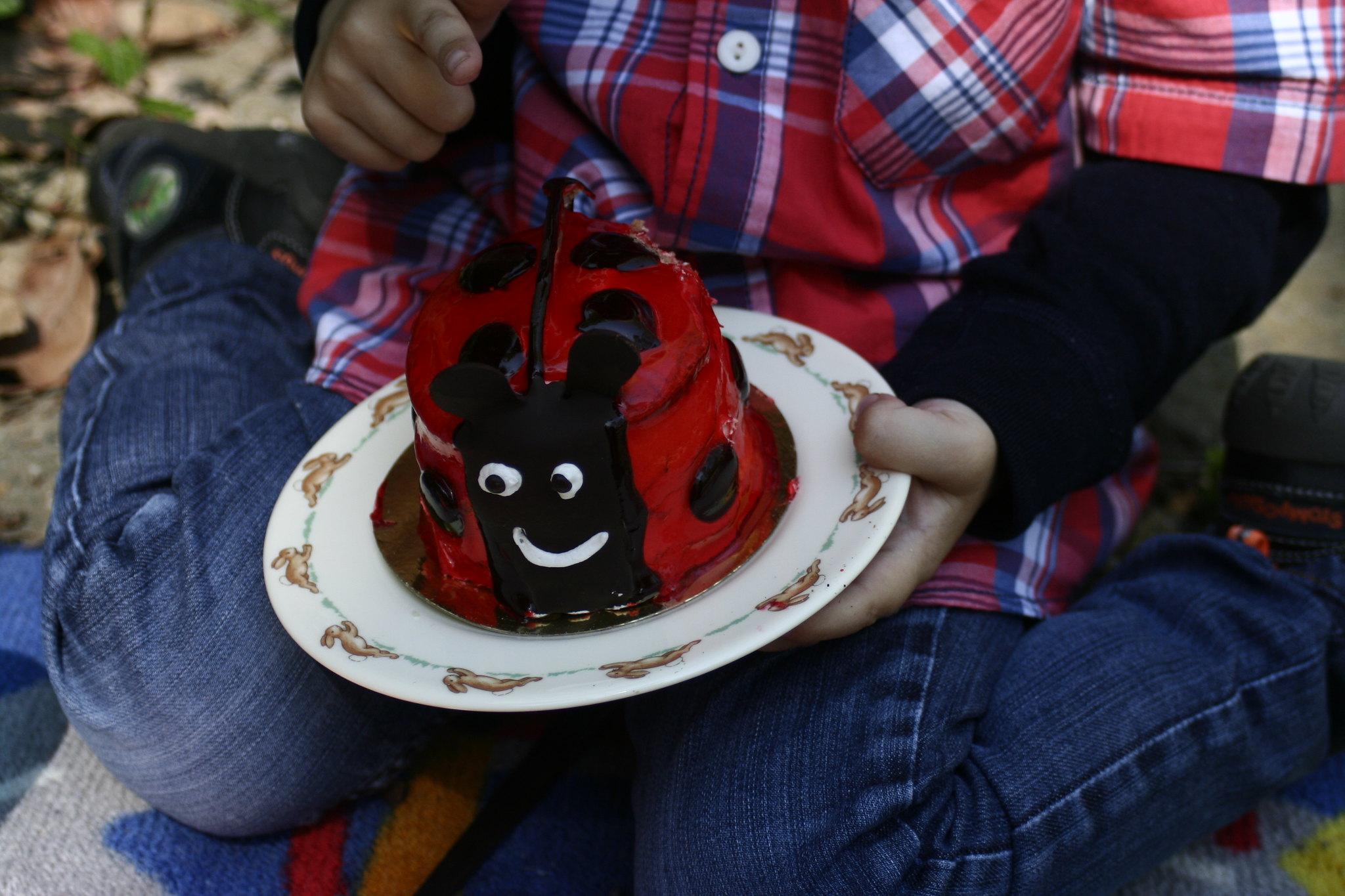 Ladybird cake.