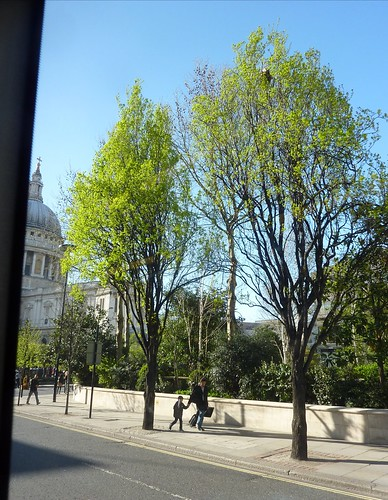 Spring In London From Bus width=