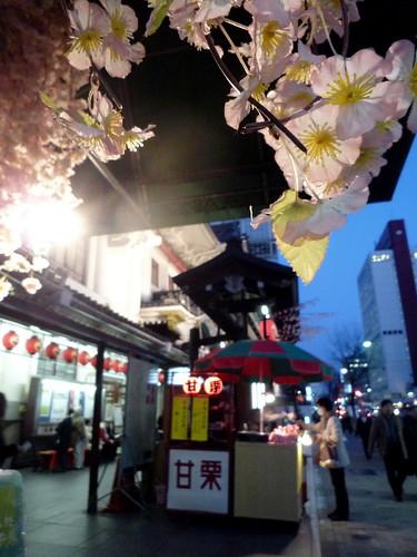 歌舞伎座21年3 00051