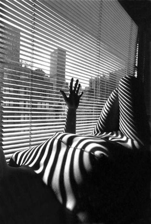 Lucien Clergue, Nude Zebra, New York, 1998
