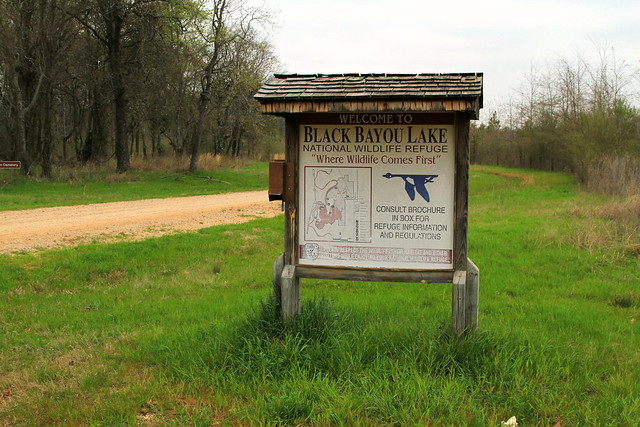 Black Bayou Lake Sign