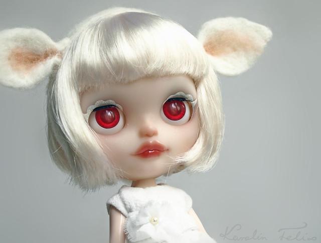 Albino Baby Lamb