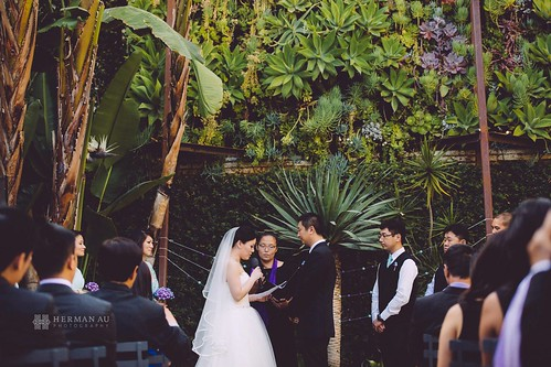 Asian wedding officiant in Los Angeles, CA