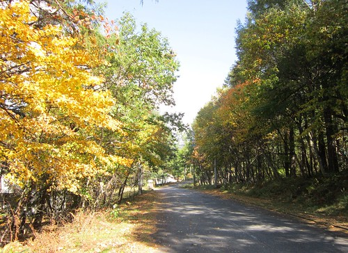 散歩道の紅葉 2013年10月12日10:10 by Poran111