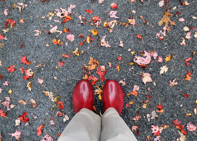 Red Boots Red Leaves