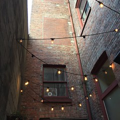 lights on the patio of oddfellows in seattle