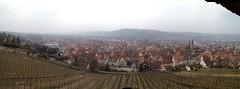 Panorama auf die Burg