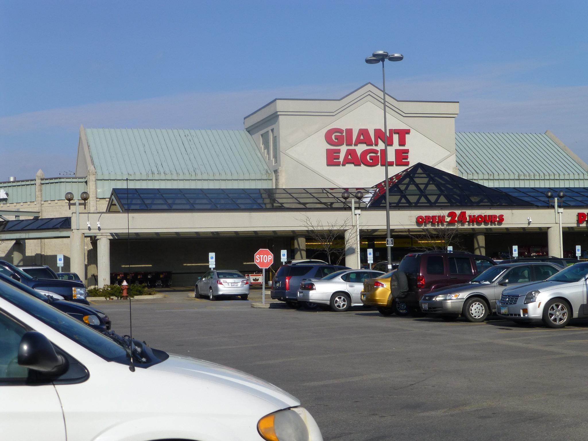 Eagle Wall Decor