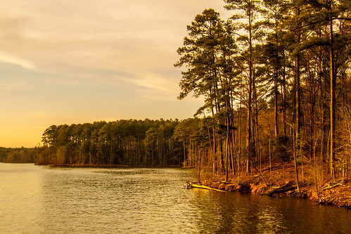 lake water landscape nc carolina jodan