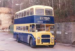Cobham Bus Museum rallies.
