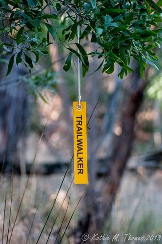 Oxfam marker