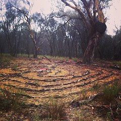 Walked near the maze today. Don't often do & always slightly worried that it will be gone. But still there :) #canberra #mtainslie #maze