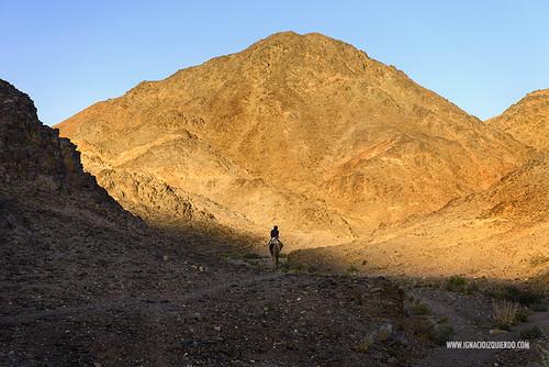Israel - Neguev Desert - Nahal Shlomo 02