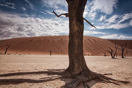 africa canon sand sanddune namibia sossusvlei deadvlei namibnaukluftpark leefilters