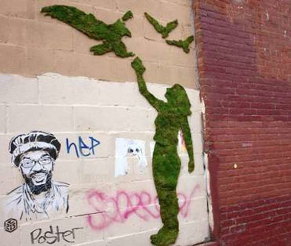 MOss graffiti-diarioecologia