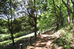 よこやまのみち 東京都多摩市と神奈川県川崎市 県境