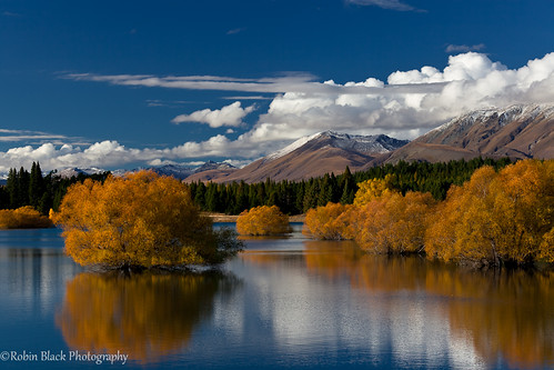 Lake Tekapo Fall Color Reflection