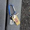 Lost keys on Little Prospect Hill in Waltham. #waltham #prospecthillpark #lostkeys