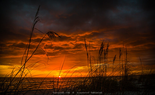 ocean sunset water beautiful grass silhouette sand waves unitedstates florida marcoisland