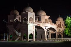 Mansa Devi Gate