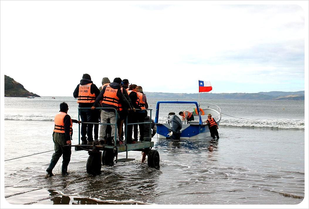 Puñihuil penguin colony cart Chiloe