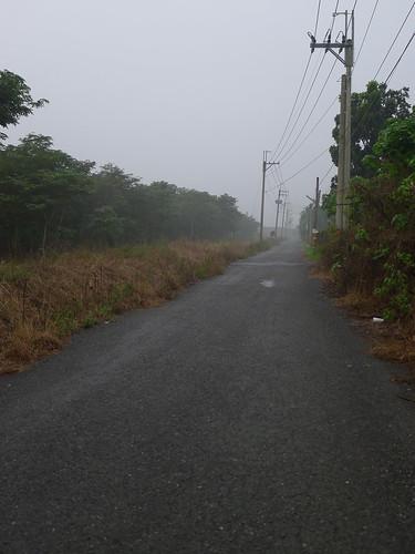 萬巒往枋寮的小鄉道