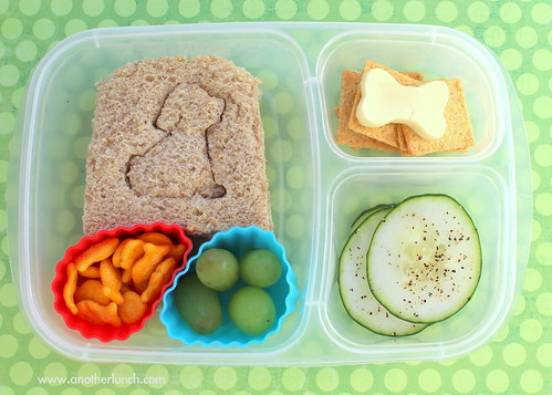 Go Dog Go lunch box for Kindergartener
