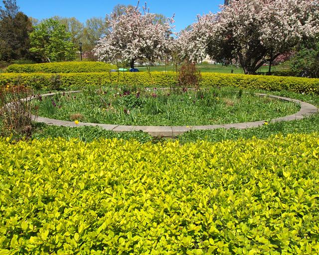 Circle Garden Queens Botanical Garden New York City