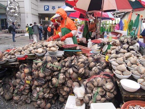 clams - jalgachi market