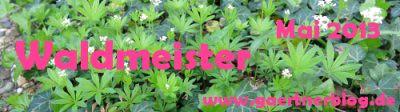 Garten-Koch-Event Mai: Waldmeister [31.05.2013]