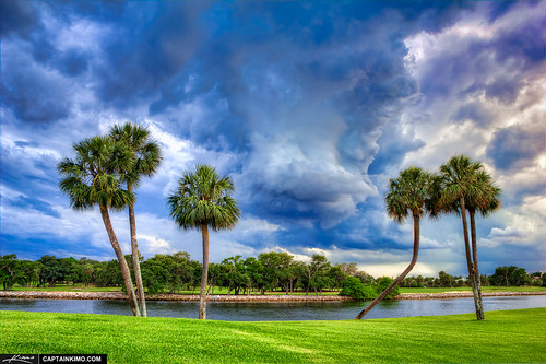 Storm-Clouds-Over-Palm-Trees-in-North-Palm-Beach-Golf-Course