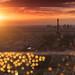The Light of Paris ... by Yannick Lefevre