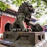 雍和宮 (Yong He Gong Lama Temple)