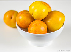 Plums on white background / Susine su sfondo bianc…