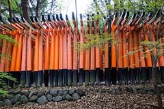 Fushimi Inari Taisha XIX