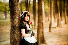 [Free Images] People, Women - Asian, Cosplay, French Maid, People - Flowers / Plants, Rose ID:201304021400