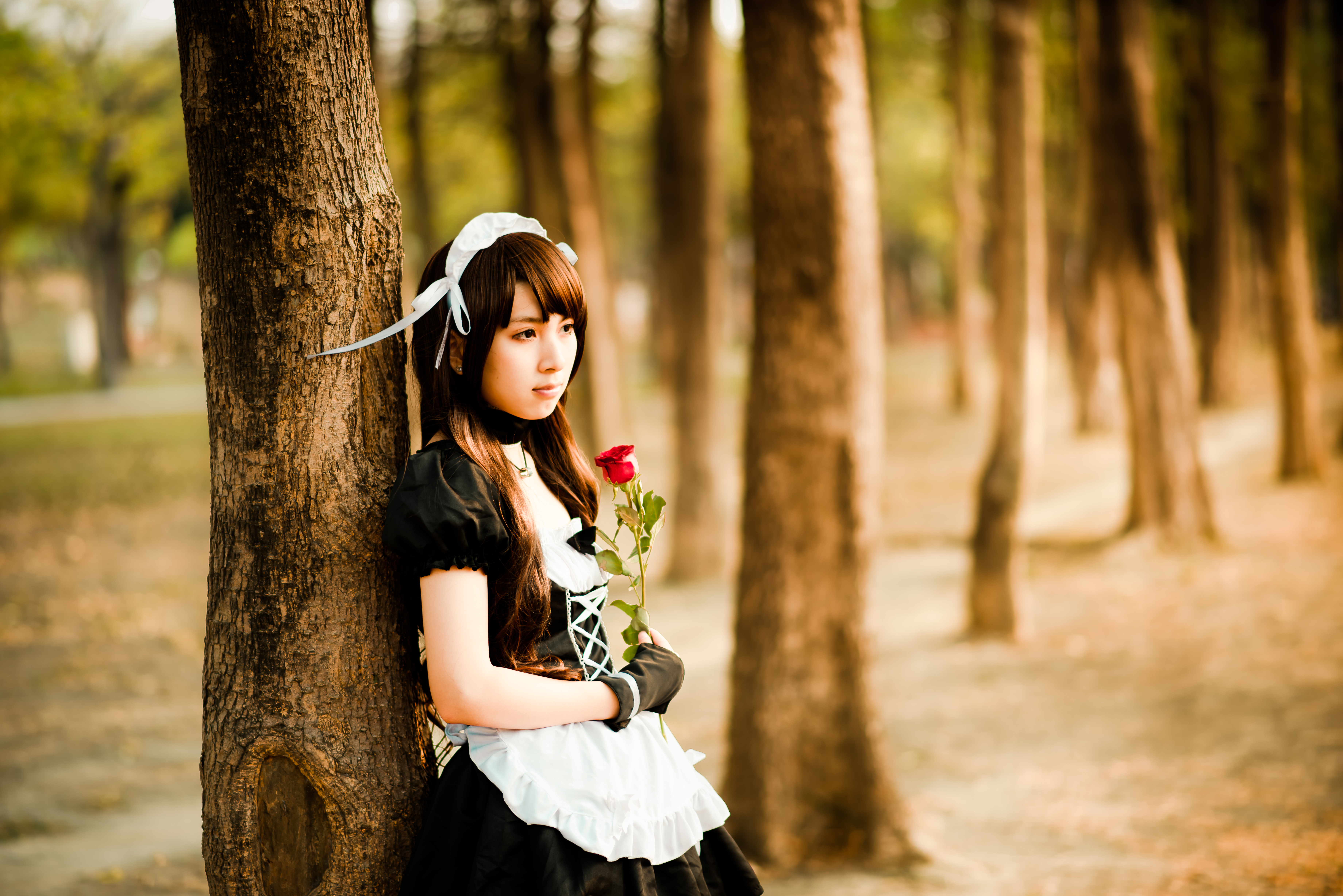 List Of Synonyms And Antonyms Of The Word Japanese Cosplay Wallpaper