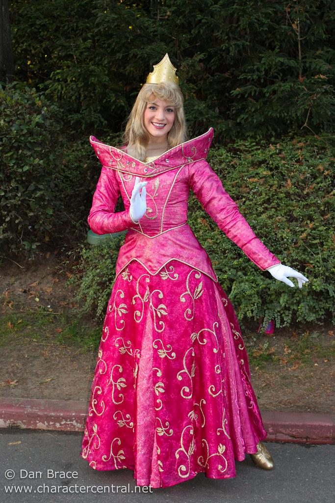 Meeting Princess Aurora Snow White And Cinderella By Disney Dan