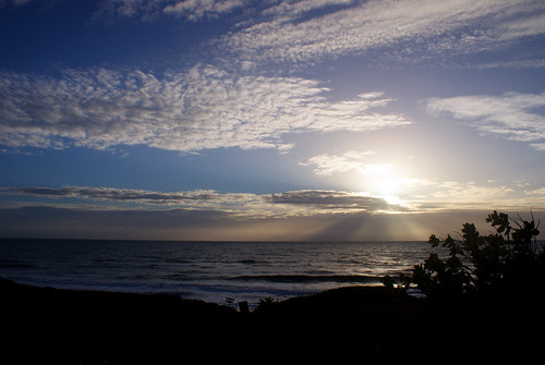 ocean blue light sea cloud sun plant silhouette rising day wave beam a200 arimm pwpartlycloudy