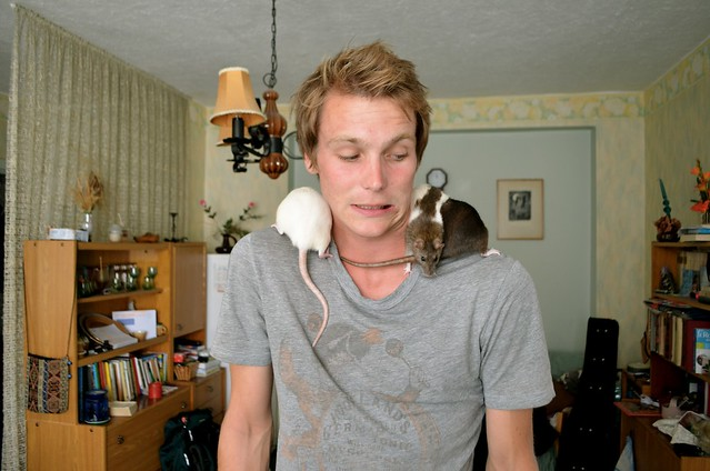 Playing With Trained Rats in Estonia
