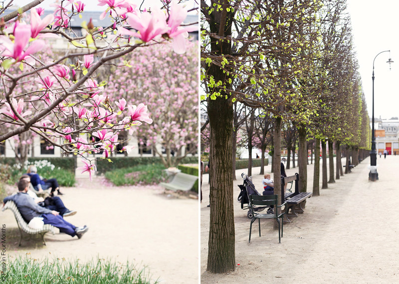 Spring in Jardin du Palais Royal by Carin Olsson (Paris in Four Months)