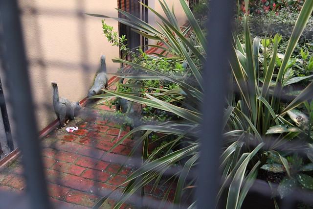 Esculturas de gatos en patio de cantón