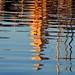 reflets_vieux_port
