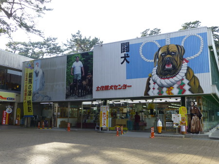 katurahama-2013-1-01