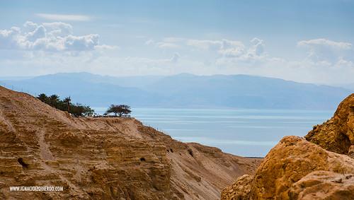 Israel - Ein Gedi Natural Park 03