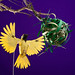 African Weaver Bird - Final Shot by andy singleton