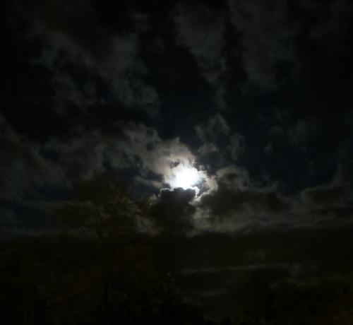 Night Landscape by betameme